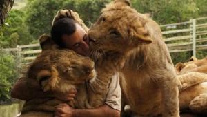 Kevin Richardson y su relación con los leones