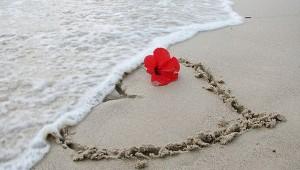 Clasificación de corazones