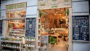 """'LA HUERTA DE ALMERÍA' un multiespacio """"Green"""" en Madrid"""